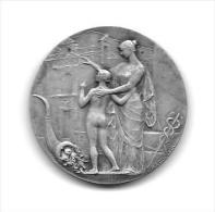 Médaille Jeton Argent Caisse D'épargne De Perpignan 1836 - Professionnels / De Société