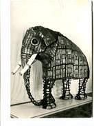 Cp - ELEPHANT - Tour De Londres : Armouries - Elephants
