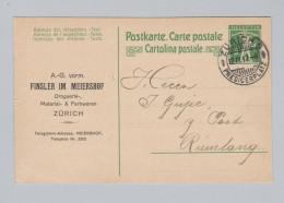 Schweiz Ganzsache Mit Privatzudruck 1917-03-12 Zürich Drogerie Farben Finsler Meiershof - Ganzsachen
