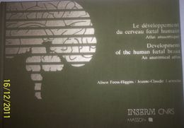 Le Développement Du Cerveau Fœtal Humain » Atlas Anatomique  Inserm CNRS 1987 - Andere
