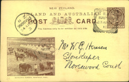 """1901, 1 Cent Victoria Stationery Card With Picture """"""""Watering Horses"""""""" Used Domestic From NAPIER. - Unclassified"""