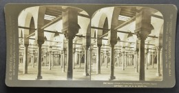 STEREO Egypt, University Of Cairo, Interior Of Hall Of Instruction (419) - Stereoscopic
