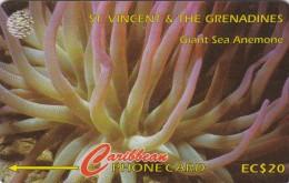 St. Vincent & The Grenadines, STV-142C, Sea Anemone,  2 Scans. - St. Vincent & The Grenadines