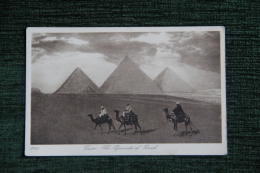 CAIRO - The Pyramids Of Gizeh - Pyramides