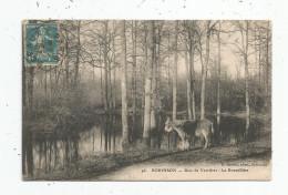 Cp , 92 , ROBINSON , Bois De VERRIERES , La BOURSILLIERE , Voyagée 1911 , âne , Photo : P. Javelle - Le Plessis Robinson