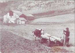 La Caisse Régionale Du Crédit Agricole Mutuel De La Haute-Saône Et Du Territoire De Belfort.................. - France