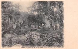 ¤¤  -   8   -  SEYCHELLES   -   MAHE   -  Route De La Forêt Noire    -   ¤¤ - Seychelles