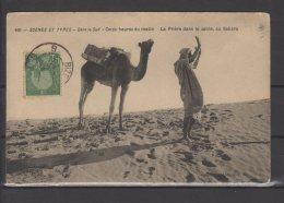 """Tunisie - N° 31 Obli/sur Carte """" Prière Dans Le Sable """"  - Cachet Ambulant """" Bizerte A Tunis """" - 1911 - Tunisia (1888-1955)"""