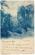 CPA Schweiz/Suisse: Souvenir De Bex - Tour De Duin, 1900, 2 Scans - VD Vaud