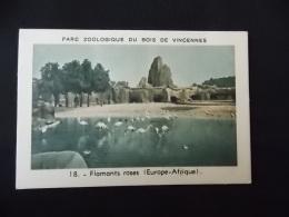 Image Chromo Les Eaux De Cologne Etoile Parc Zoologique Du Bois De Vincennes 18 Flamants Roses Europe Afrique - Other