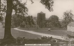 GB SHEFFIELD / Beauchief Abbey / GLOSSY CARD - England