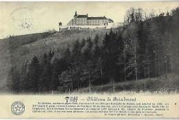 TILFF : Chateau De Brialmont - Esneux