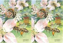 622  Abeille Européenne, Mouche à Miel (Apis Mellifera): 2 Cpa D'Allemagne -  Western Honey Bee Postcards From Germany - Abeilles