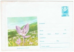 FLORA-L81 - RUSSIE Entier Postal Env. Illustrée Fleurs Colchiques - Toxic Plants