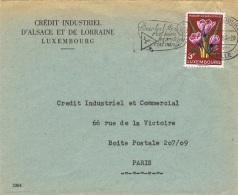 FLORA-L90 - LUXEMBOURG Lettre Commerciale Pour Paris Fleurs De Crocus Et Flamme Illustrée Animaux - Toxic Plants