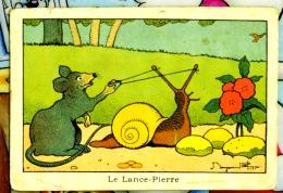 Chromo Image Bledine Jacquemaire Benjamin Rabier Le Lance Pierre Escargot - Trade Cards