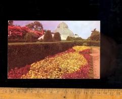 NORFOLK Virginia : Gardens Floral Fairyland 1952 - Norfolk