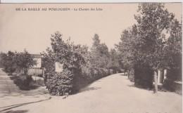 """44  LOIRE ATLANTIQUE LA BAULE """" Chemin Des Lilas """"   Thuret - La Baule-Escoublac"""