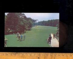 VIRGINIA BEACH : CAVALIER HOTEL GOLF CLUB Country Club 18 Hole Golf Course Green Golfer - Virginia Beach