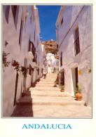 Espagne - Frigiliana - Andalucia - Calle Típica - 1003 - Spanien