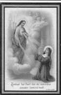 1848 1914 Clementina De Groote Jozef D'Haens Sinay Sinaai Waes Waas Ingekleurd Bidprentje Doodsprentje Image Mortuaire - Images Religieuses