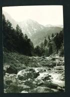 POLAND  -  Tatry Zachodnie  Used Postcard - Poland