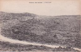 CPA Chemin Des Dames - Craonne - 1914-18 (23230) - France