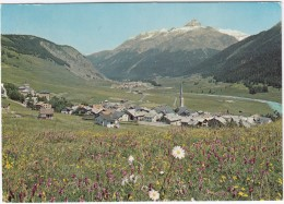 Zuoz Cun Piz D'Esan - GR Graubünden