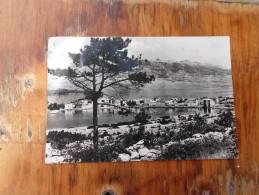 Vinjevac 1958 - Croatie