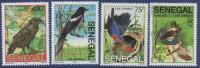 Sénégal 2006 Les Oiseaux Vögel Birds Rouge Gorge Corneille Pie Rossignol 4 Val. RARE MNH