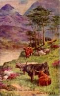 MISCELLANEOUS ART - LAND OF THE MOUNTAIN (CATTLE) - SYDNEY HAYES Art119 - Scotland