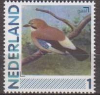 Netherlands.2012.Birds.Garrulus Glandarius.MNH 22359-V2 - Oiseaux