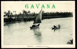 BENTRE - Plantation De Cocotiers - Vietnam