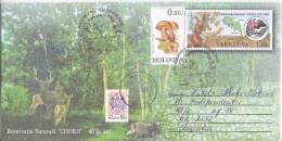 "2016 , Moldova  Moldavie , ""Month Of The Forest"" , Animals ,Birds , Squirrel , Wild Boar ,  Mushrooms , Special Canclell - Moldavie"