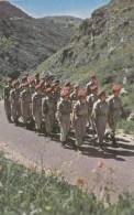 ISRAEL PARCHUTIST GIRLS ON MARCH ARMEE COMPAGNIE MILITAIRES PARACHUTISME TSAHAL UNIFORME - Monde