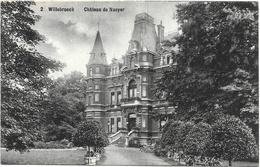 Willebroeck NA3: Château De Naeyer 1908 - Willebroek