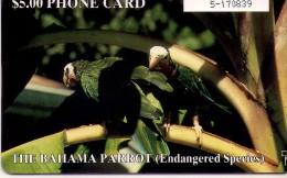TARJETA TELEFONICA DE BAHAMAS. - Bahamas