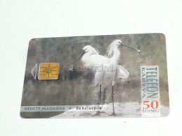 Eurasian Spoonbill Or Common Spoonbill Platalea Leucorodia Bird Vogel Phonecard Hungary - Pájaros