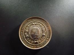 Argentine. Médaille Commémorative Du Recensement Général Effectué En 1887 - Tokens & Medals