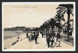 CANNES Rare Promenade De La Croisette (Gilletta) Alpes Maritimes (06) - Cannes
