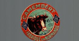 Etiquette De Fromage Camembert EHC - Formaggio