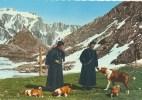 Moines Et Chiens Du Grand St. Bernard  (3N176 - Non Classés