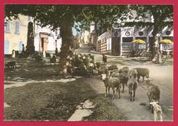 CPSM Saint-Étienne Les Orgues - L'entrée Du Village - Andere Gemeenten