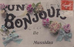 24) MUSSIDAN - UN BONJOUR    - (CARTE FANTAISIE) - Mussidan
