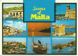SCENE OF MALTA -- - Malta