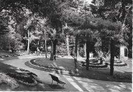 LA BAULE LES PINS (44) Le Parc Des Driades - France