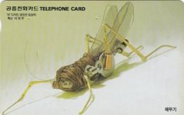 Korea, MO9806121, Grasshopper, Insect, 2 Scans. - Corea Del Sud