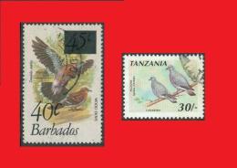 Barbados Overprint 1982 / Tanzania 1991 Pigeons Tauben -- Fine Used - Pigeons & Columbiformes