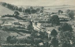 GB TOLLARD ROYAL / General View / - Inghilterra