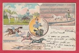 Cirque Barnum And Bailey Limited - Officielle Postkarte - Litho 1 - 1901 ( Voir Verso ) - Cirque